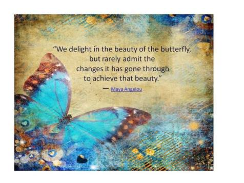 beauty-of-the-butterfly